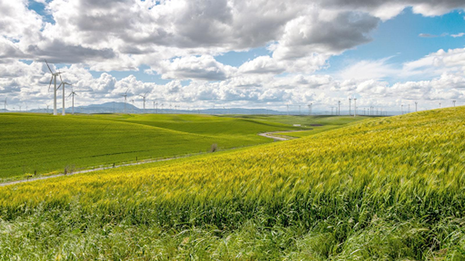 """<h4>CLEAN ENERGY & GLOBAL WARMING</h4><h5>We're calling for the expansion and extension of clean energy tax credits.</h5><div><a style=""""padding: 8px 15px 10px 10px; font-family: 'open_sansbold' !important; color: #fff; border: none; border-radius: 5px; background-color: #FF0000;"""" href=""""http://environmentamerica.webaction.org/p/dia/action4/common/public/?action_KEY=42202"""">TAKE ACTION</a></div><em>WestBoundary Photography Chris Gill</em>"""